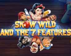 Snow Wild