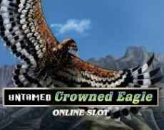 Untamed Eagle